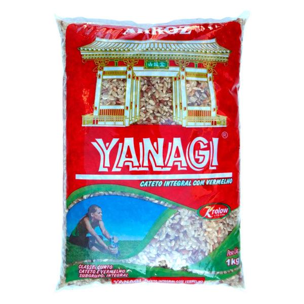 Yanagi Arroz Oriental Integral Curto